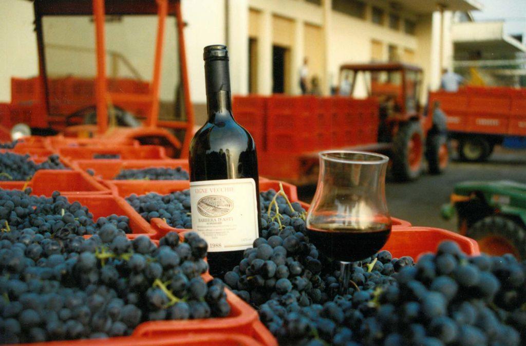 1988 - Vigne Vecchie